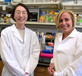 The Hartwell Foundation - 2015 Fellows Individual Biomedical