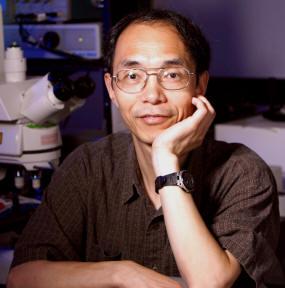2006 Hartwell Investigator Guoping Feng, Ph.D., Duke University