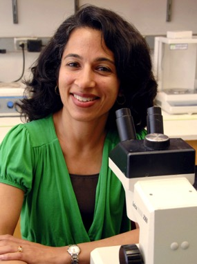 2008 Hartwell Investigator Mala Mahendroo, Ph.D., University of Texas Southwestern Medical Center