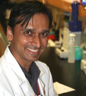 2011 Hartwell Investigator Praveen Raju, MD, Ph.D.,  Weill Cornell Medical College of Cornell  University
