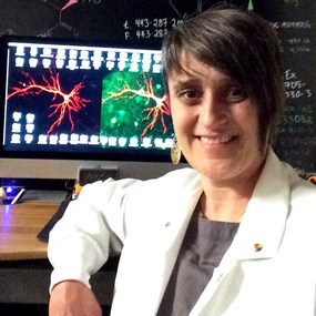 2014 Hartwell Investigator Gül Dölen, MD, Ph.D., The Johns Hopkins University