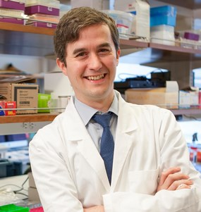 2014 Hartwell Investigator Conor Liston, MD, Ph.D., Cornell University Weill Medical College